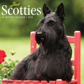 Schotse Terrier Kalender 2021