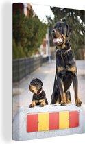 Rottweiler-puppy naast een volwassen rottweiler Canvas 90x140 cm - Foto print op Canvas schilderij (Wanddecoratie woonkamer / slaapkamer) / Huisdieren Canvas Schilderijen