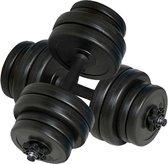 vidaXL - Halterset - Totaal 30 kg - 2 stuks - Zwart