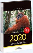 Afbeelding van National Geographic Scheurkalender 2020