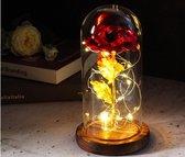 Roos in glazen stolp met LED   Liefde cadeautje   Love   Verjaardag   Moederdag   Liefde