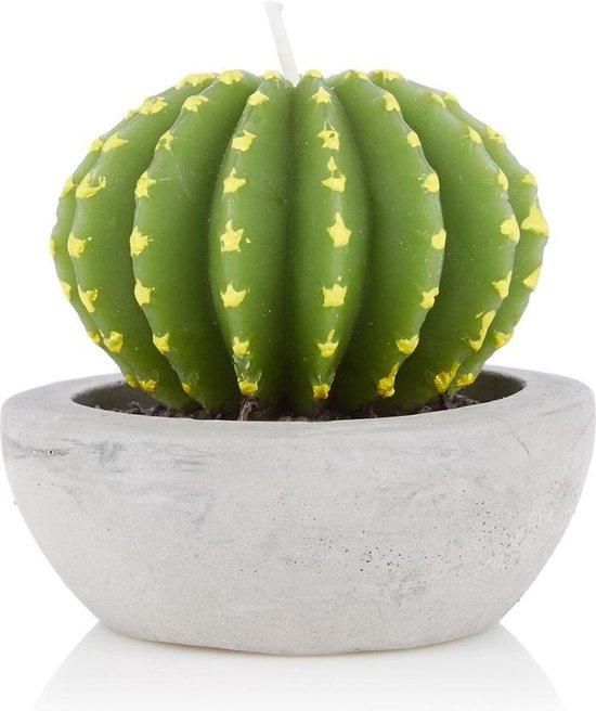 &klevering Cactus Kaars rond