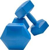 2x Dumbbell - 10 kg - Dumbbell Set - Blauw