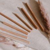 Herbruikbare Bamboe Rietjes   Lengte 15cm   15 Stuks   Incl Schoonmaak Borstel & Tasje  Plastic Vrij
