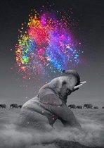 Happy Painter® XL 40x50cm Diamond Painting volwassenen dieren - Olifant met kleurenexplosie - volledig pakket vierkante steentjes