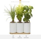 Lilo Connect, de indoor smart garden van Prêt à Pousser - inclusief Basilicum, Mint, Bieslook