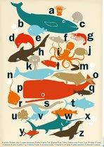 ABC poster - Alfabet poster - zeedieren - Multi Colour