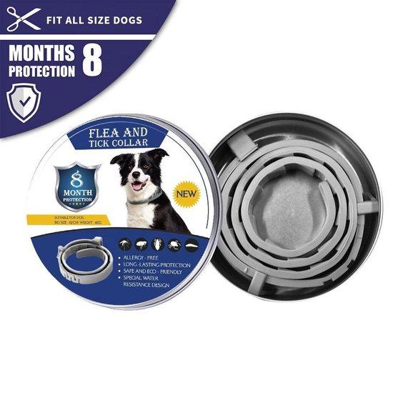Vlooienband Hond - Tekenband - 8 Maanden Bescherming - Honden - Anti Vlooien en Teken middel - 62 cm