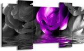 Canvas schilderij Tulpen | Paars, Grijs, Zwart | 120x65 5Luik