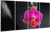 Glasschilderij Orchidee | Rood, Zwart, Grijs | 160x80cm 4Luik | Foto print op Glas |  F001396