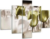 Glasschilderij Tulpen | Bruin, Groen, Wit | 100x70cm 5Luik | Foto print op Glas |  F002775