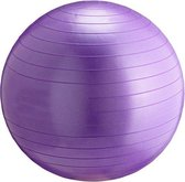 Gym Ball - Focus Fitness - 55 cm