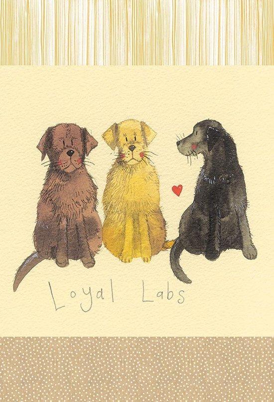 Alex Clark Theedoek Honden ~ Loyal Labradors