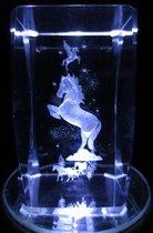 3D glasblokje paard en eenhoorn