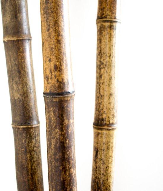 Bol Com Decoratie Bamboe Stokken 100 Cm 3 Stuks