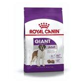 Royal Canin Giant Adult - Hondenvoer - 15 kg