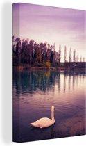 Een kleurrijke foto van een zwaan tijdens een zonsondergang in de herfst canvas 20x30 cm - klein - Foto print op Canvas schilderij (Wanddecoratie woonkamer / slaapkamer)