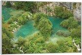 Plexiglas –Bomen in het Water– 60x40 (Wanddecoratie op Plexiglas)