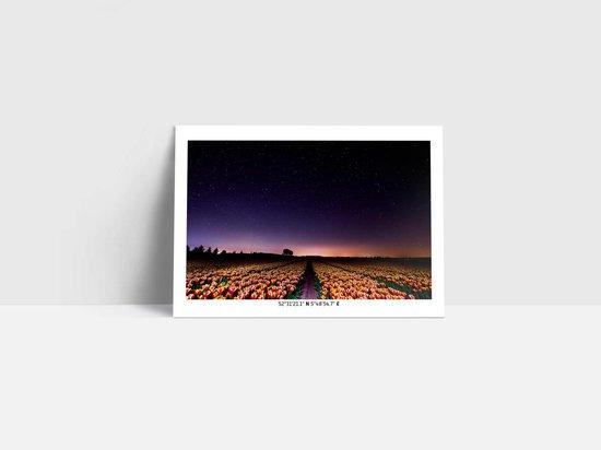 Set ansichtkaarten - Thema Holland - Nederland - Landschappen - Wenskaarten zonder tekst - Set van 5