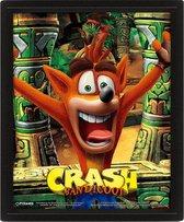 Crash Bandicoot Mask Power Up 3D Frame
