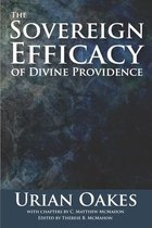 The Sovereign Efficacy of Divine Providence