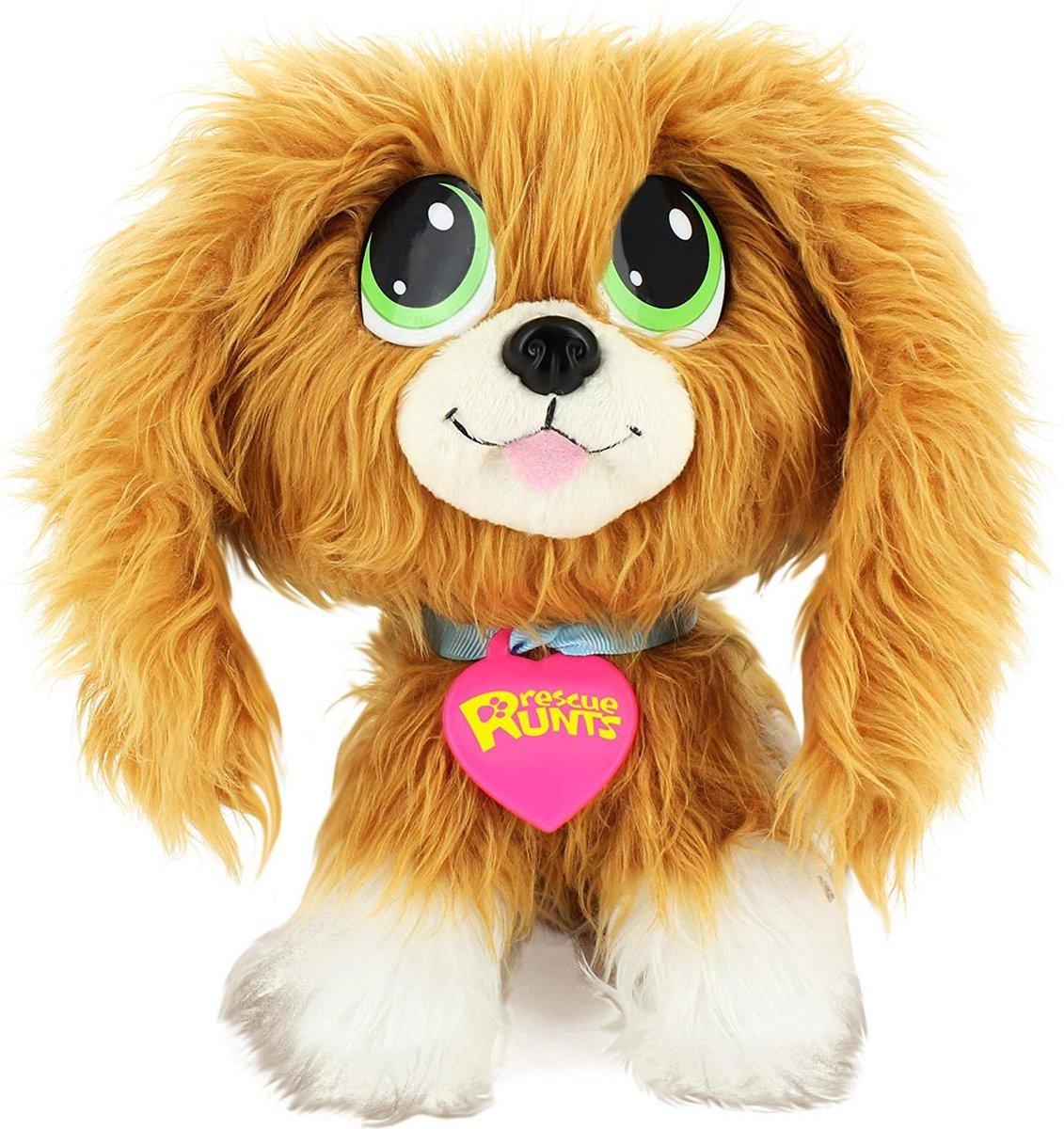 KDkids-hondje-Spaniel-verzorg de puppy