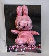 Kleintje fotografie geboorte kaart Nijntje meisje - Roze