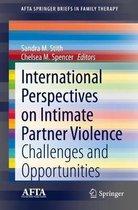 International Perspectives on Intimate Partner Violence