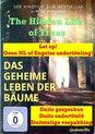 Das geheime Leben der Bäume - The Hidden Life of Trees [DVD]