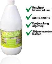Biogroen Groene Aanslag Verwijderaar - Groene Aanslagreiniger - Groene Aanslag - Hoge concentratie - 60 tot 120 m2 - Best Getest - Binnen 24 Uur Resultaat
