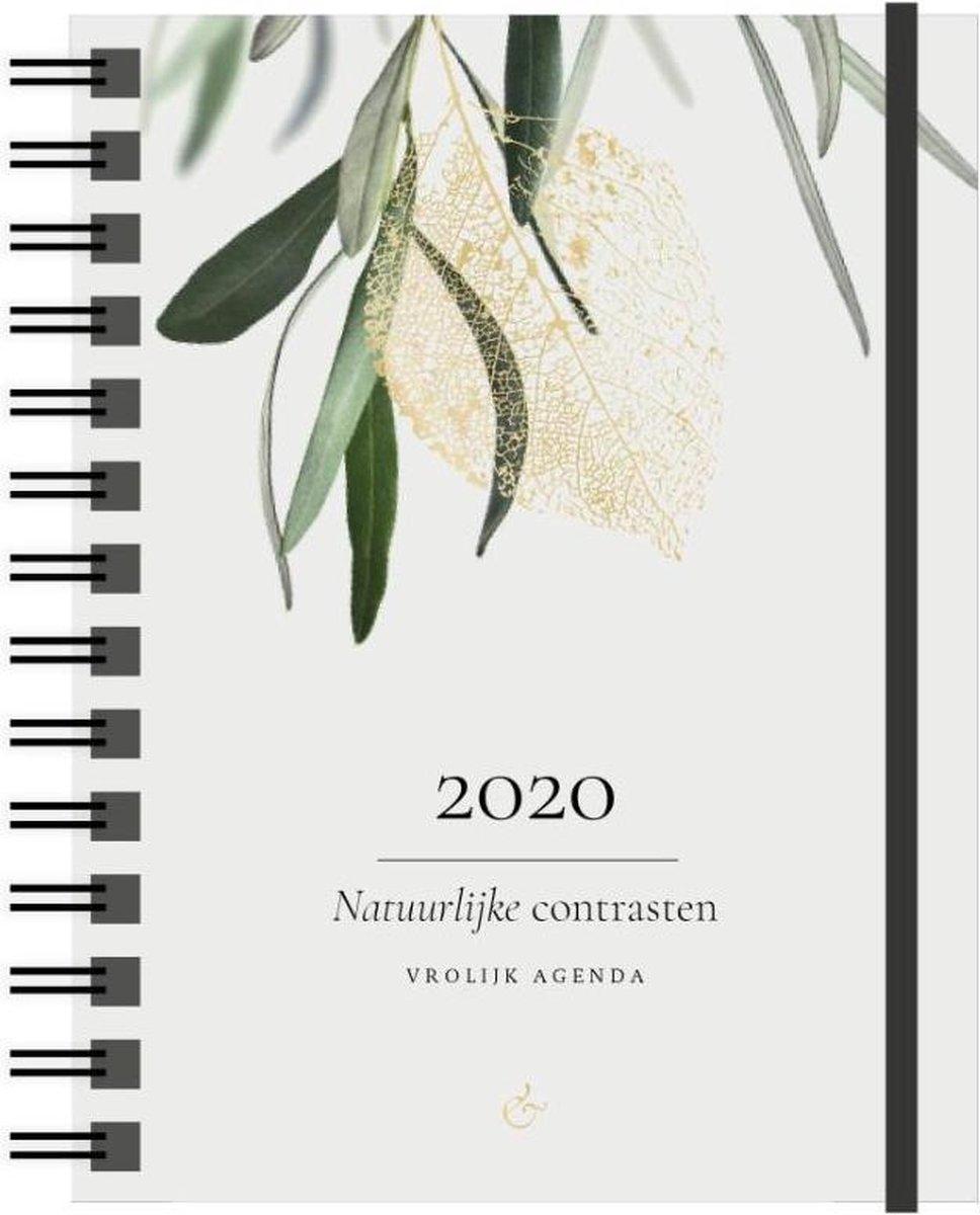 Vrolijk Agenda 2020 klein