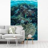 Harde koralen in het water van het Nationaal park Wakatobi fotobehang vinyl breedte 180 cm x hoogte 270 cm - Foto print op behang (in 7 formaten beschikbaar)