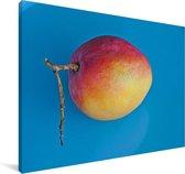 Rode kleuren van de mango Canvas 60x40 cm - Foto print op Canvas schilderij (Wanddecoratie woonkamer / slaapkamer)