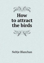 How to Attract the Birds
