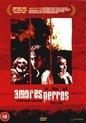 Amores Perros - Dvd