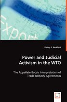 Power and Judicial Activism in the Wto