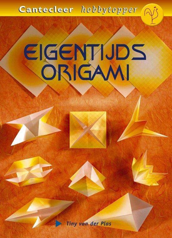 Eigentijds Origami - Tiny Van Der Plas |