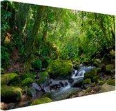 Regenwoudkreek Canvas 30x20 cm - klein - Foto print op Canvas schilderij (Wanddecoratie woonkamer / slaapkamer)