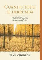 Boek cover Cuando todo se derrumba (When Things Fall Apart) van Pema Chodron
