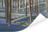 Weg in het bos met Engelse sterhyacinten Poster 180x120 cm - Foto print op Poster (wanddecoratie woonkamer / slaapkamer) XXL / Groot formaat!