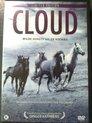 Cloud  (Wilde hengst uit de Rockies)