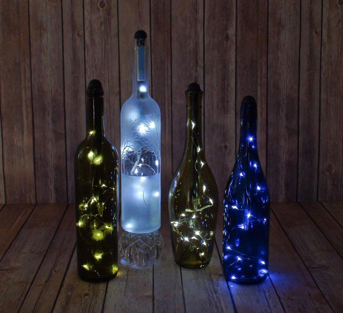 bol.com | 5 x Fles verlichting Light my Bottle op Batterijen Flessen Decoratie