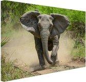 Rennende olifant Canvas 80x60 cm - Foto print op Canvas schilderij (Wanddecoratie woonkamer / slaapkamer) / Dieren Canvas Schilderijen
