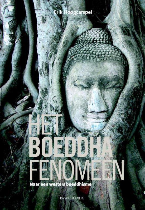 Het Boeddha fenomeen. Naar een westers boeddhisme - Erik Hoogcarspel |
