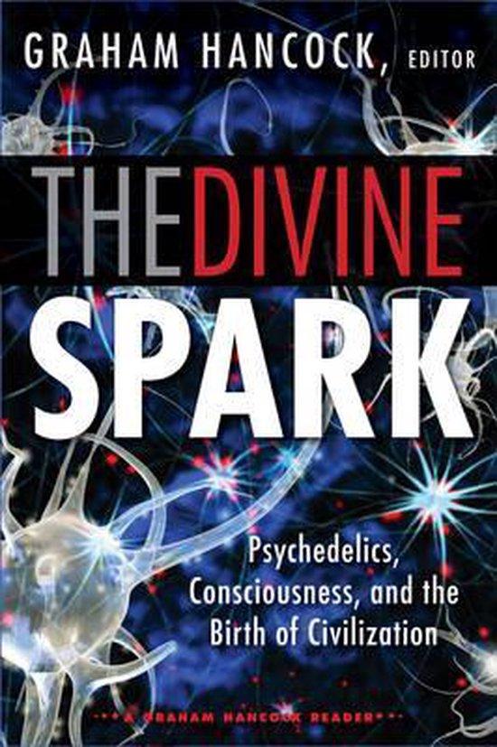 Boek cover Divine Spark van Russell Brand (Paperback)