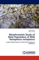 Morphometric Study of Male Population of Wild Notopterus Notopterus