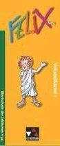 Felix 1 Neu. Vokabelkartei