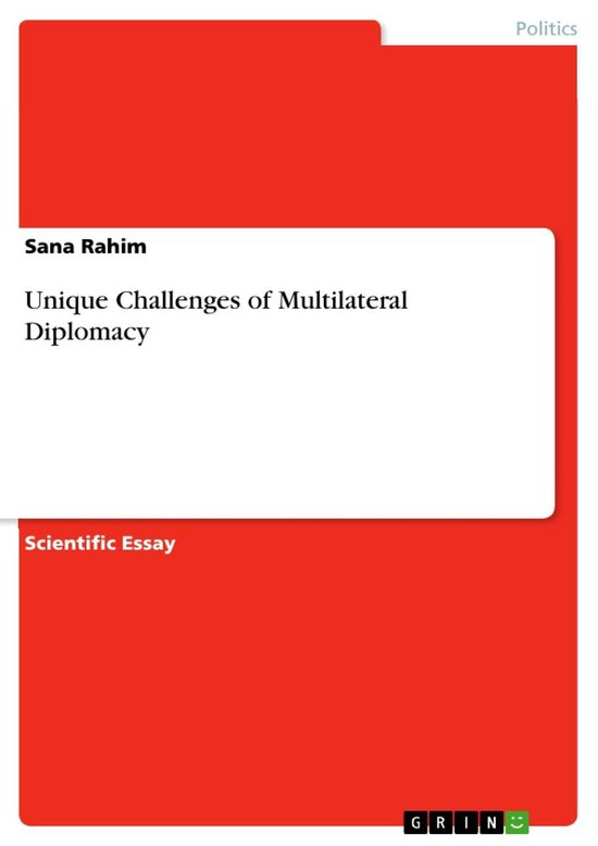 Unique Challenges of Multilateral Diplomacy