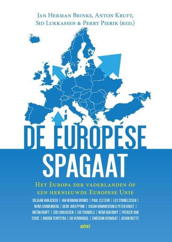 Boek cover De Europese Spagaat van Jan Herman Brinks (Paperback)