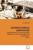 Soziokulturelle Adaptation